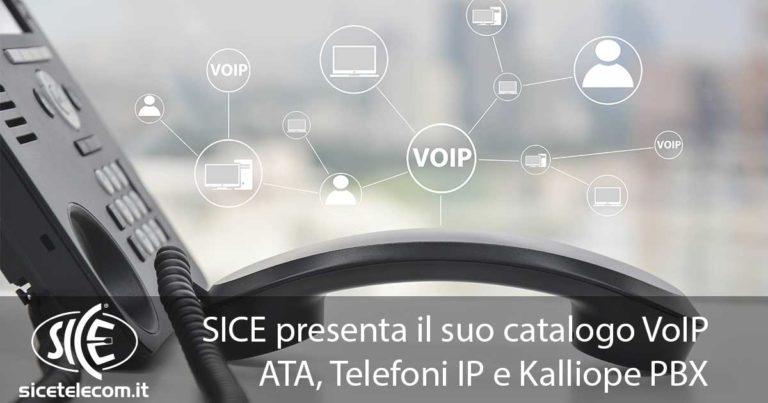 SICE Tutto per il VoIP: ATA